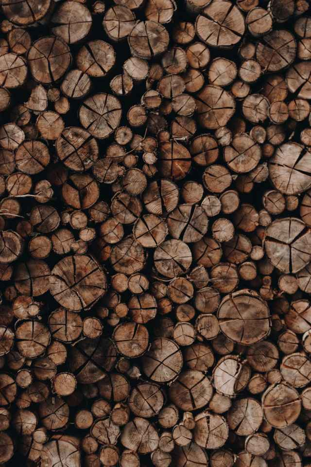 photo of woodpile